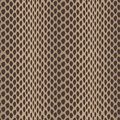 Seamless  structured snake skin Royalty Free Stock Photo