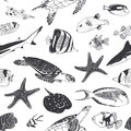Seamless summer pattern. Sea and ocean inhabitants. Fish, turtle Royalty Free Stock Photo