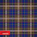 Seamless tartan pattern illustration of vector Royalty Free Stock Images