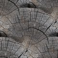 Seamless texture background old wood cracks