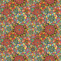 Seamless texture with bright colorful flowers endless floral pattern for beautiful design Stock Images