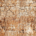 Seamless texture - cracked clay ground Stock Images