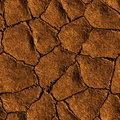 Seamless Texture earth cracked because of drought Royalty Free Stock Photo