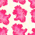 Seamless texture Flower pink rhododendron polygons vector