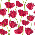 Seamless texture with flower tulip Stock Image