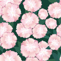 Seamless texture with gentle pink flowers Royalty Free Stock Photo