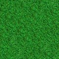 Seamless texture green meadow grass tileable Stock Image