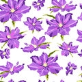 Seamless texture with hand-drawn lilac clematis