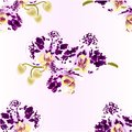 Seamless texture orchid purple and white spotted Phalaenopsis stem with flowers and buds closeup vintage vector editable illust Royalty Free Stock Photo