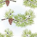 Seamless texture pine and pine cone branch winter snowy natural background vintage vector illustration editable