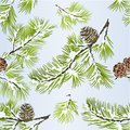 Seamless texture pine tree and pine cones branches winter snowy natural background vitage vector illustration editable