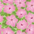 Seamless texture with pink flowers Stock Photo