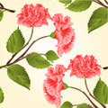 Seamless texture pink hibiscus tropical flower vector Royalty Free Stock Photo