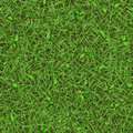Seamless texture of summer green grass with small leaves