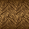 Seamless texture of tiger skin Royalty Free Stock Photo