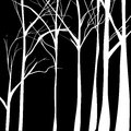 Seamless texture with trees patterns on trees vector illustration great for any use Stock Photos