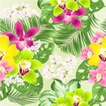 Seamless texture tropical Orchids Cymbidium green and purple yellow and pink flowers and Monstera and palm on a white backgroun Royalty Free Stock Photo