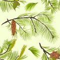 Seamless texture White Pine branch with pine cone and flowering black pine vintage vector Illustration editable