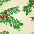 Seamless texture Yew branches with red berries vector