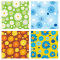 Seamless textures of flowers Stock Photography