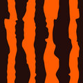 Seamless Tiger Hide Pattern Stock Images