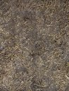 Black Soil with dried grass backgSeamless Texture of the Ground with Dry Herbs. Royalty Free Stock Photo
