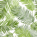 Seamless Tropical Palm Leaves Background