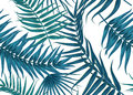 Seamless tropical pattern, exotic background with palm tree branches, leaves, leaf, palm leaves. endless texture Royalty Free Stock Photo
