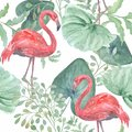 Seamless  tropical pattern with  leaves, birds Flamingo on a white background. Royalty Free Stock Photo