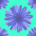 Seamless turquoise floral pattern background daisies diagonals Stock Photos