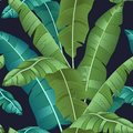 Seamless turquoise and green tropical pattern with banana leaves on black background, flat line vector and illustration. - Vector