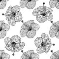 Seamless vector background, outline hibiscus flowers on white background