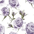 Seamless vector design pattern arranged from violet roses. Trendy summer watercolor style design.