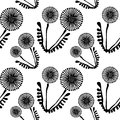 Seamless vector floral pattern with flowers. Cute hand drawn black and white background with dandelions.