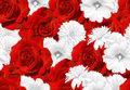 Seamless vector flower mosaic. Red roses and white flowers. Rose, mallow, rudbeckia Royalty Free Stock Photo