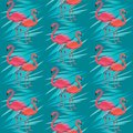 Seamless vector pattern, banner with flamingo, tropical leaves exotic flower design