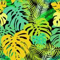 Seamless vector pattern of greenery leaves monstera and palm. Exotic tropical repeat ornament