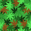 Seamless vector pattern with marijuana leaves, hemp, cannabis