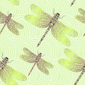 Seamless vector pattern with shiny dragonfly. Royalty Free Stock Photo