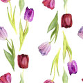 Seamless vector pattern with watercolor tulips Royalty Free Stock Photo
