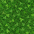 Seamless vector texture of green grass with clover leaves