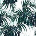 Seamless vector tropical pattern with dark green palm leaves on white background.