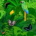 Seamless vector tropical rainforest Jungle background with parrot and butterflies