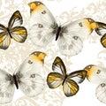 Seamless vector wallpaper pattern with butterflies