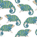 Seamless wallpaper with chameleon isolated on white Royalty Free Stock Photo