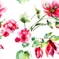 Seamless wallpaper with geranium and peony flowers watercolor illustration Royalty Free Stock Photos