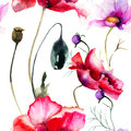 Seamless wallpaper with poppy flowers watercolor illustration Royalty Free Stock Photo