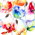 Seamless wallpaper with poppy and tulips flowers watercolor illustration Royalty Free Stock Photos