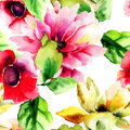 Seamless wallpaper with summer flowers watercolor illustration Royalty Free Stock Photography