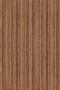 Seamless walnut (wood texture) Royalty Free Stock Photo